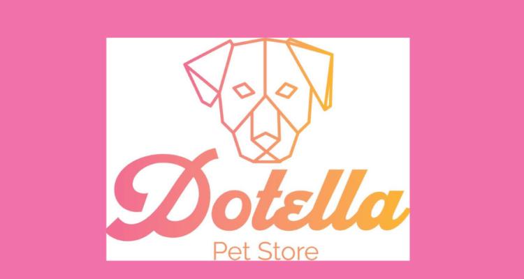 Histórias de Brasileiros de Sucesso no Exterior – Dotella Pet Store
